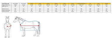 85 135 95 145 105 155 115 165 125 175 135 185 145 195 155 205 165 215 please see rug conversion chart to get the closest fit for your horse