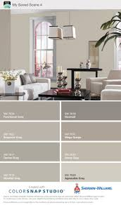 Mega Greige & Anew Gray - Sherwin Williams. ( warm grays ). My choice