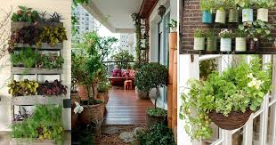 Small Picture Creative Ideas for Balcony Garden Containers Balcony Garden Web