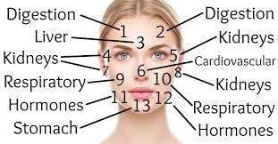 Acne Face Chart Chinese Face Mapping What Your Face Is Trying To Tell You