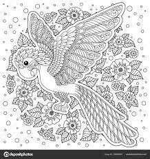 Kleurplaten Voor Volwassenen Zomer Kleurplaat Volwassenen Papagaai