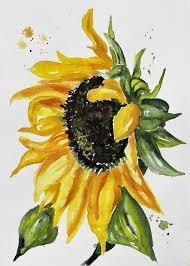 55 easy watercolor painting ideas for