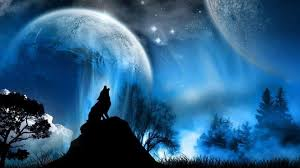 blue wolf background. Perfect Wolf Blue Wolf Wallpaper  52 Wallpapers For Background S