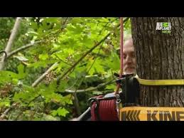 Treehouses Not Just For Kids AnymoreTreehouse Masters Free Episodes