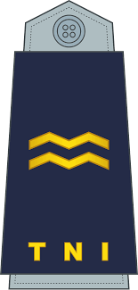 cwo navy file 12 tni navy cwo svg wikimedia commons