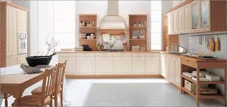Modern Kitchen Cabinet Designs Kitchen Design Pleasant Hotel Kitchen Design Layout Pdf Kitchen