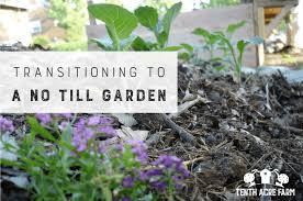 transitioning to a no till garden