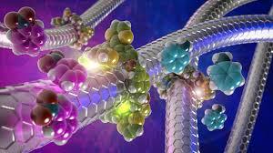 Anillos moleculares para controlar la actividad catalítica de los nanotubos