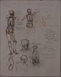 sabin howard anatomy study howard anatomy study 1 howard anatomy study 2