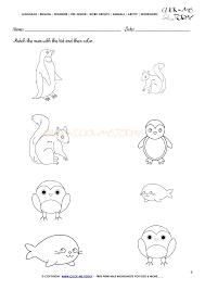 Animals Worksheet - Activity sheet Match 3