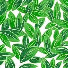 Green Leaf Nature Scene Vector Abstract ...