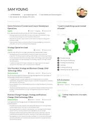 Curriculo Exemplo Modelo De Curriculum Vitae Relevantes E Modernos Para 2019