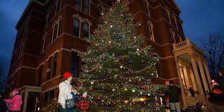 Peabody Light Plant Peabody Seeks 40 Foot Donated Christmas Tree Itemlive