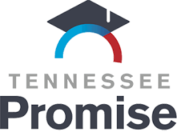 Image result for tn promise logo