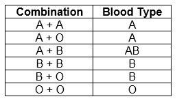 Blood Group Combination Chart Understanding Genetics