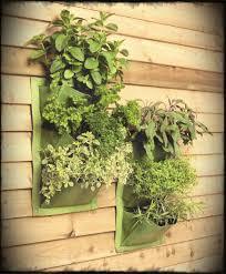 brilliant sunroom decoration introducing captivating indoor vertical hanging garden fabulous vertical indoor garden ideas