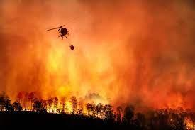 Nerede yangın var? Hangi şehirlerde yangın çıktı? - Haberler