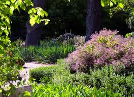 Small Picture 18 best Drought Tolerant Beautiful Gardens images on Pinterest