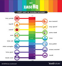 Color Chart For Universal Indicator Vector Color Chart At Getdrawings Com Free For Personal