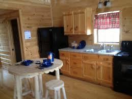 small cabin kitchen designs. small cottage kitchen design ideas cabins for sale tiny home cabin designs d