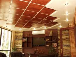How To Install Decorative Ceiling Tiles Decorative Suspended Ceiling Tiles Davinci Pictures 79