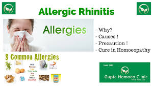 Allergic Rhinitis In Homoeopathy - [Gupta Homoeo Clinic, Jaipur ...