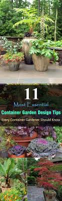 design a garden. With These 11 Important Container Garden Design Tips, You Can Create A Beautiful
