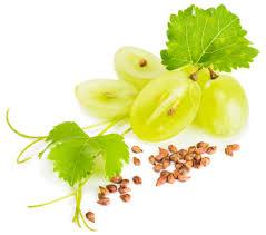 「huile pepin de raisin」の画像検索結果