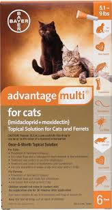 Advantage Ii Dosage Chart For Cats Advantage Multi Topical Solution For Cats 5 1 9 Lbs Ferrets 6 Treatments Orange Box