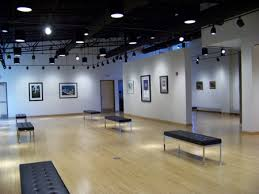 track lighting for art. pauly friedmen art gallery grand opening at misericordia university track lighting for