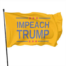 Amazon.com : Impeach Trump Outdoor Flag ...