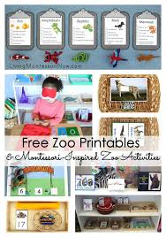 Montessori Inspired Summer Themes And Activities Living
