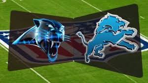 Image result for panthers vs. lions