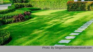 Bbb Tip Landscaping And Lawn Care