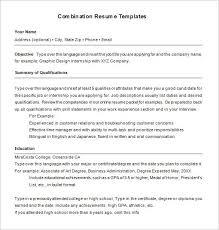 Hybrid Resume Template Word Resume Sample