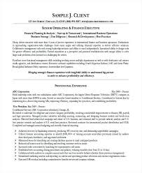 Financial Resume Sample Junior Financial Analyst Resume Sample