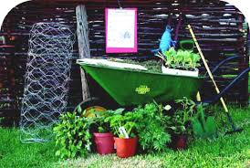 Setting Up And Running A School Garden Stunning Great Gardening Ideas Remodelling