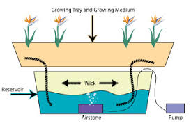how to build a hydroponic garden. hydroponic wick system how to build a garden e