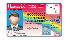 License Hawaii Manual Hawaii Drivers Drivers