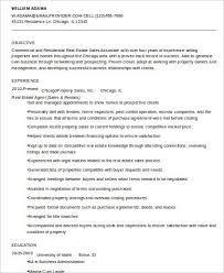 Property Agent Resume Sample Real Estate Agent Resume 6 Examples In Word Pdf