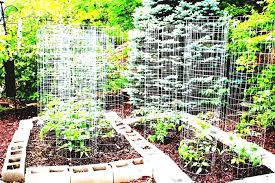 Ergonomic Vegetable Garden Design Planning A Raised Plans Ideas ...