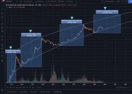 This is the highest price registered by bitcoin since august last year. The 2020 Bitcoin Halving Bull Run Why This Cycle Is Different By Mitchell Koulouris Coinmonks Medium