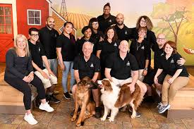You can be assured that all our caregivers provide your dog with the best possible care. Doggie Daycare And Pet Boarding Watertown Massachusetts