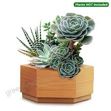 cuucor modern bamboo succulent planter pot indoor plant holder for succulent plants mini cactus
