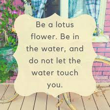 be a lotus flower be in the water and do not let the water touch you