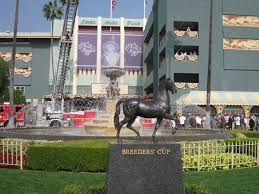 Breeders Cup Charts 2010 Breeders Cup Wikipedia