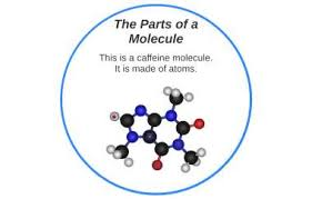 The Parts of a Molecule by Wesley Mills