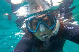 Snorkelling at Bushrangers Bay in ...