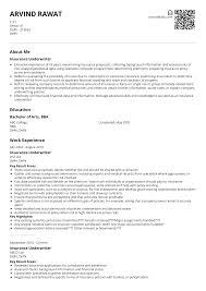 Insurance Underwriter Resume Sample Ready To Use Example