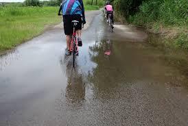 復活したぞー「ピヨピヨ」 : 団塊おじさん自転車日和